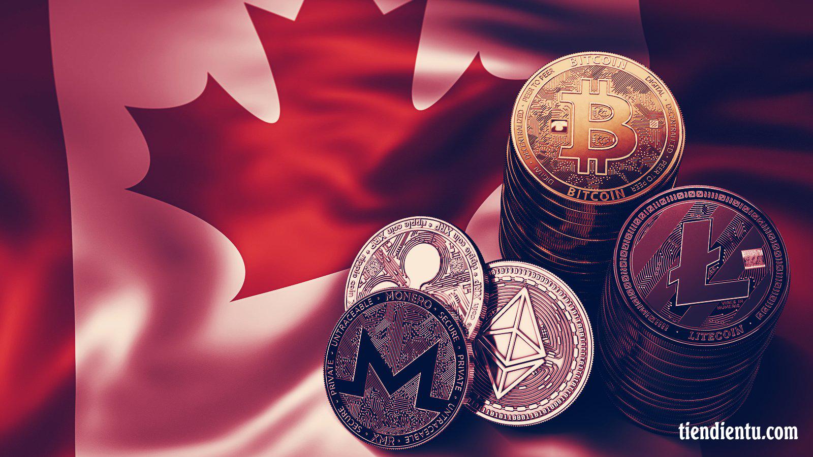 Ứng dụng tiền điện tử tốt nhất ở Canada